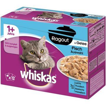 Whiskas Portionsbeutel Multipack Ragout 1+ Fischauswahl in Gelee 12x85g (Menge: 4 je Bestelleinheit)