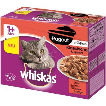 Whiskas Portionsbeutel Multipack Ragout 1+ klassische Auswahl in Gelee 12x85g (Menge: 4 je Bestelleinheit)