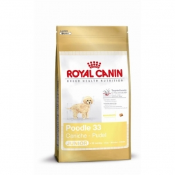 Royal Canin Pudel Junior 500g