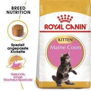 Royal Canin Feline Kitten Maine Coon 36 400g