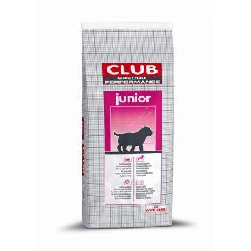 RC Club Special Performance Junior 15kg