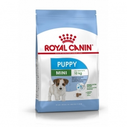 RC Size Mini Puppy 4kg