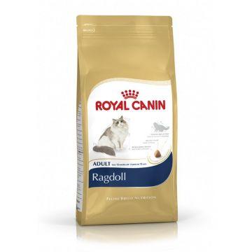 Royal Canin Feline Breed Ragdoll 10kg