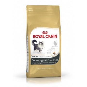 Royal Canin Feline Breed Norwegische Waldkatze 400g