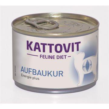 Kattovit Dose Feline Diet Aufbaukur 175g (Menge: 12 je Bestelleinheit)