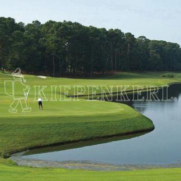 Kiepenkerl Golfrasen Masters Nachsaat 10 kg