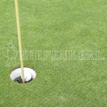Kiepenkerl RSM 445 Golfrasen Masters Fairway 10kg