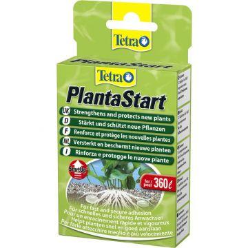 Tetra Plant PlantaStart 12 Tabletten