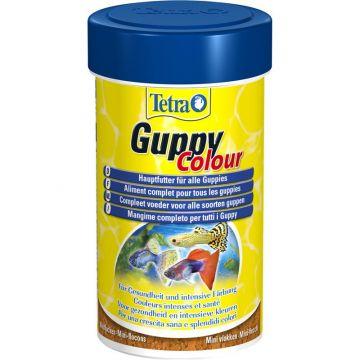 Tetra Guppy Color 100 ml