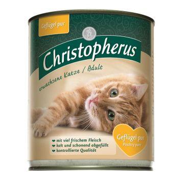 Christopherus Cat Dose für erwachsene Katzen Geflügel pur 800g (Menge: 6 je Bestelleinheit)