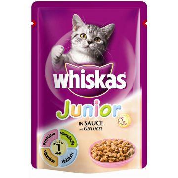 Whiskas Portionsbeutel Junior mit Geflügel in Sauce 100g (Menge: 24 je Bestelleinheit)