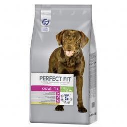 Perfect Fit Dog Adult 1+   14,5kg