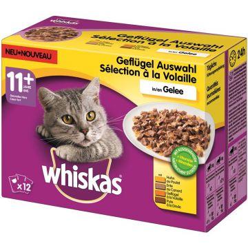 Whiskas Portionsbeutel Multipack 11+ Geflügelauswahl Gelee 12x100g (Menge: 4 je Bestelleinheit)