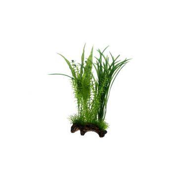 Dohse Flora Root  1   S   30 cm