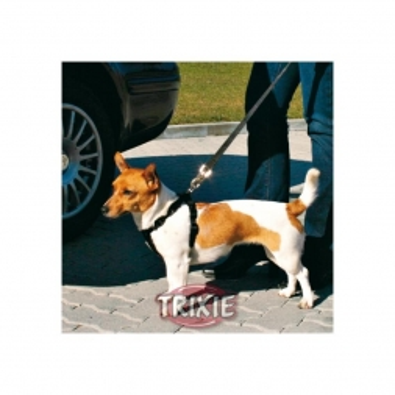Trixie Ersatzkurzführer mit Ankerhaken
