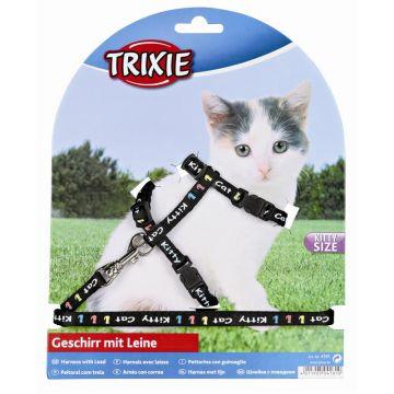 Trixie Kätzchengeschirr mit Leine, Nylon, 21-33 cm/8 mm, 1,20 m