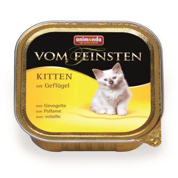 Animonda vom Feinsten Kitten Geflügel 100g (Menge: 32 je Bestelleinheit)