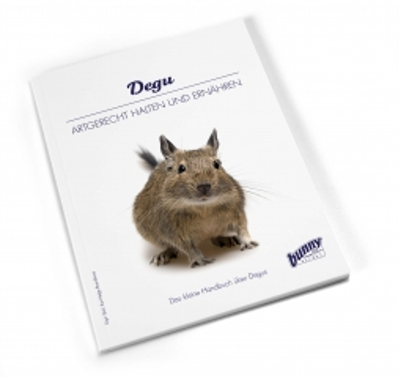 Bunny Book Degu