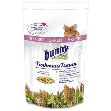Bunny FarbmausTraum Expert 500g