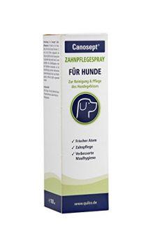 Canosept Zahnpflegespray 100 ml