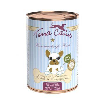 Terra Canis Welpenmenü Lamm mit Zucchini, Fenchel und Magerjoghurt 400g (Menge: 12 je Bestelleinheit)