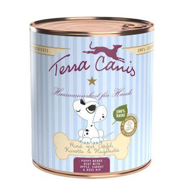 Terra Canis Dog Dose Welpe mit Rind 800g (Menge: 6 je Bestelleinheit)