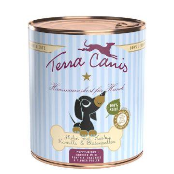 Terra Canis Dose Huhn mit Kürbis, Kamille & Blütenpollen für Welpen 800 g (Menge: 6 je Bestelleinheit)