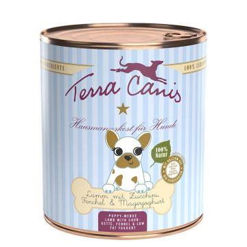 Terra Canis Dog Dose Welpe mit Lamm 800g (Menge: 6 je Bestelleinheit)