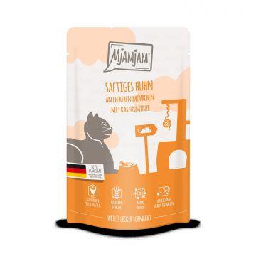 MjAMjAM - Quetschie -saftiges Huhn an leckeren Möhrchen 125 g (Menge: 12 je Bestelleinheit)