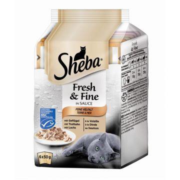 Sheba Multipack Fresh & Fine Feine Vielfalt 6x50g (Menge: 12 je Bestelleinheit)