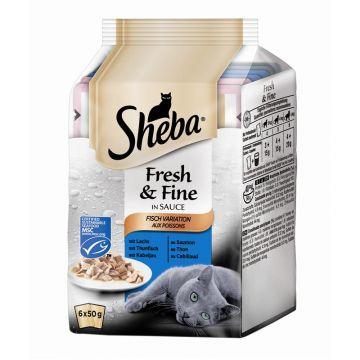 Sheba Portionsbeutel Multipack Fresh & Fine Fisch Variation 6x50g (Menge: 12 je Bestelleinheit)