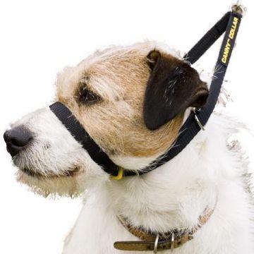 Canny Collar Erziehungshalsband Größe 7 (53 - 58cm) - schwarz