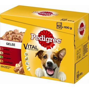 Pedigree Portionsbeutel Adult in Gelee im Multipack 12x100g (Menge: 4 je Bestelleinheit)