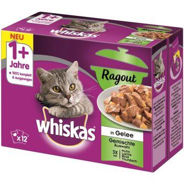 Whiskas Portionsbeutel Multipack 1+ Ragout gemischte Auswahl  12x85g (Menge: 4 je Bestelleinheit)