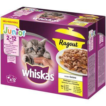 Whiskas Portionsbeutel Multipack Junior Ragout Geflügelauswahl 12x85g (Menge: 4 je Bestelleinheit)