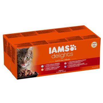 IAMS Delights Erwachsene Katzen Mix in Gelee 48 x 85 g