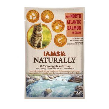 IAMS Naturally Adult Nassfutter PB 85g Nordatlantik Lachs in Sauce