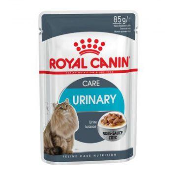 Royal Canin Feline Multipack Urinary Care in Sosse 12x85g