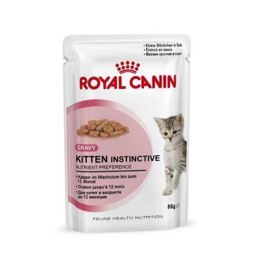 Royal Canin Frischebeutel Kitten Instinctive in Sosse Multipack 12x85g
