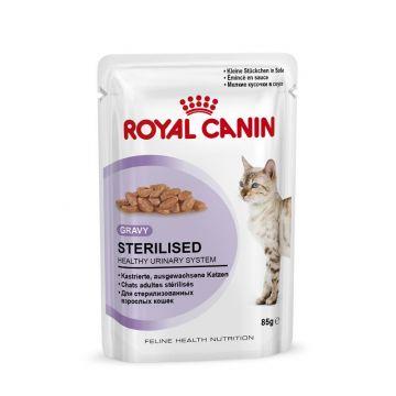 Royal Canin Frischebeutel Sterilised in Soße Multipack 12x85g