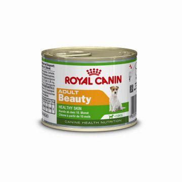 Royal Canin Dose Mini Adult Beauty 195g (Menge: 12 je Bestelleinheit)