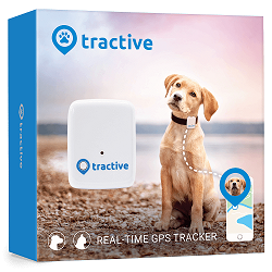 TRACTIVE GPS Tracker Classic Hund